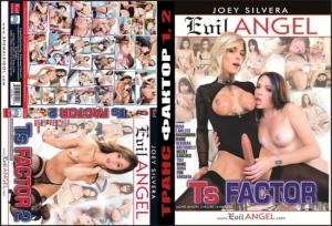 4 порно фильма на одном диске